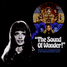the sound of wonder.jpg